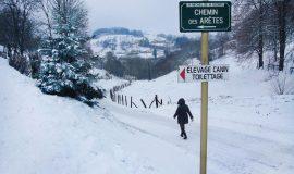 Chemin de La Chessière, St-Michel-de-St-Geoirs