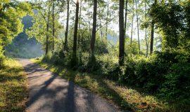 Chemin des Envers, St-Michel-de-St-Geoirs