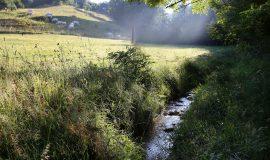 Ruisseau de Combe Moirans, Saint-Michel-de-Saint-Geoirs